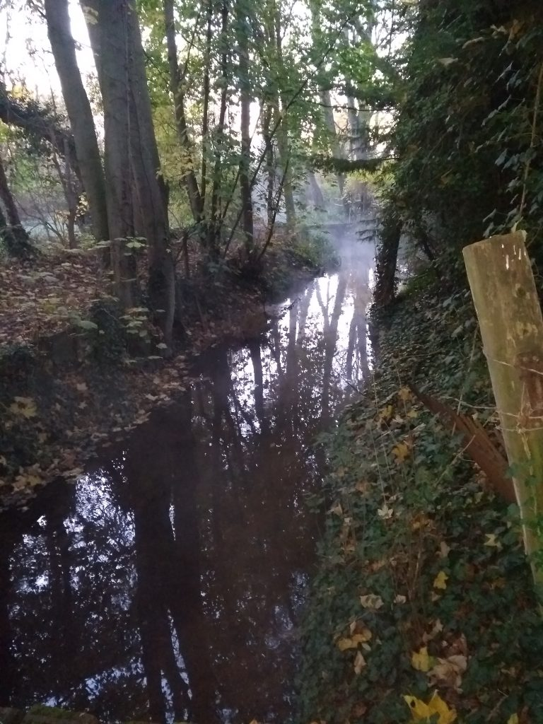 A characteristic chalk stream early morning sight, the river Mel. Photo by Iain McPhee